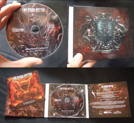 Lay Down Rotten CD